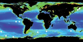 Data from NASA SeaWIFS Project