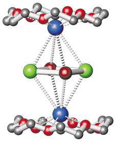 The planar anion, sandwiched between two potassium 18-crown-6 units