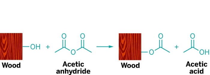 Making Wood Last Forever With Acetylation | August 6, 2012