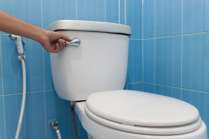 Flushing Toilets With Seawater Could Protect Marine Life