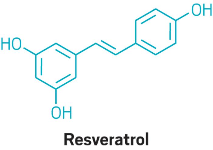 Reviving Resveratrol