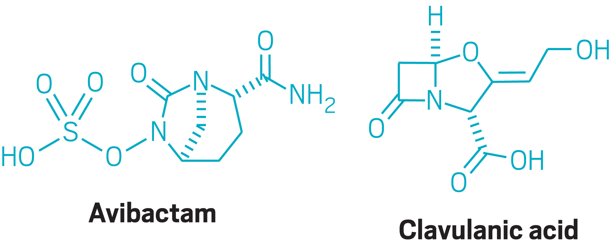 The hunt for new antibiotics grows harder as resistance builds