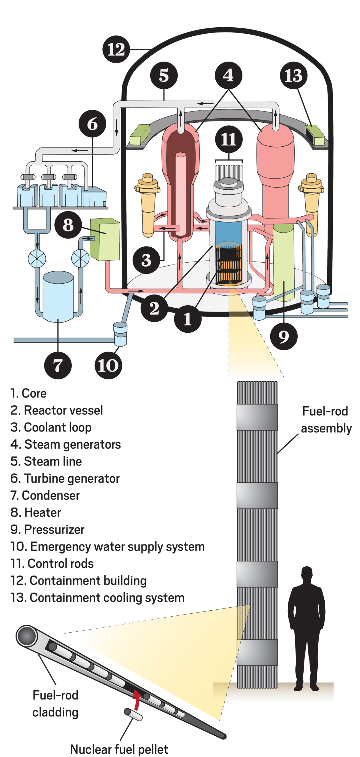 Energy losses within the turbine steam path