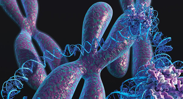 The curious DNA circles that make treating cancer so hard