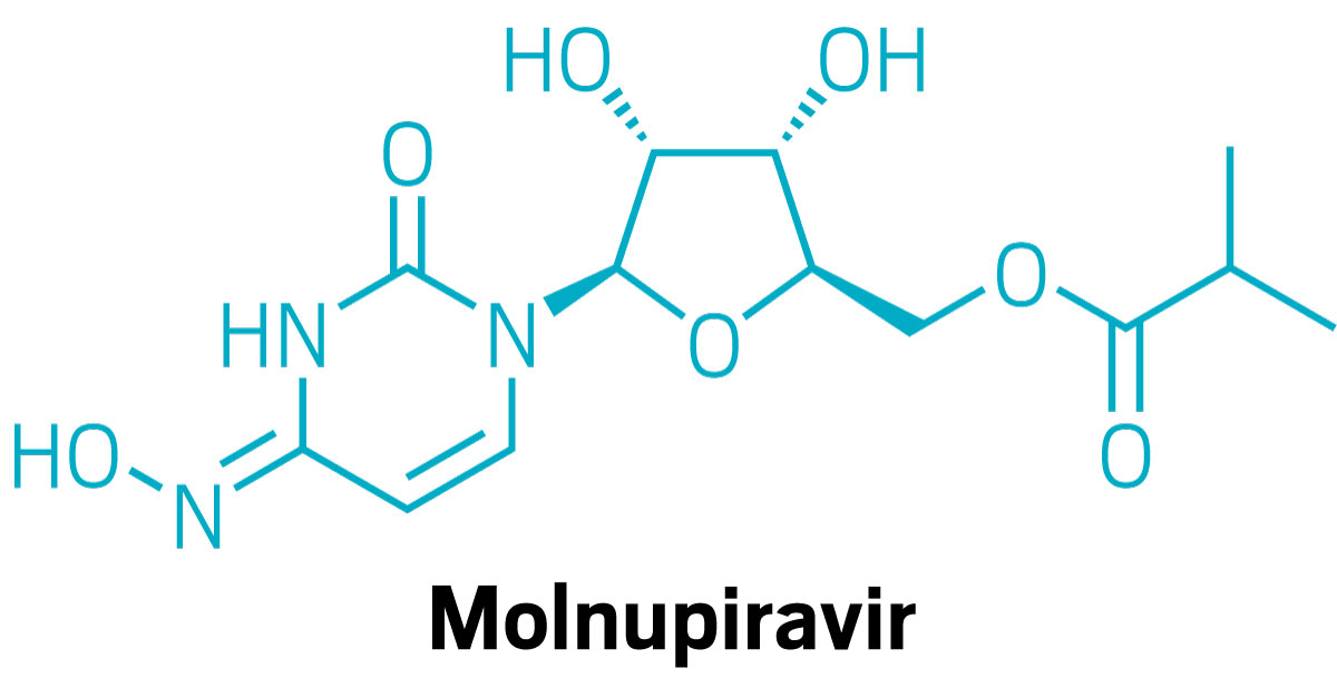 Chemists shorten the synthesis of molnupiravir to prepare for scale-up